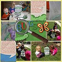 butterflies2014_copyGALLERY.jpg