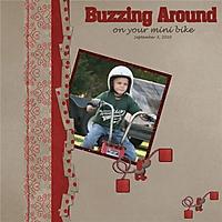 buzzing_around_-_Page_001.jpg