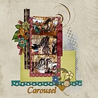 carousel_gallery.jpg