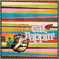 cat_nappin_fb.jpg