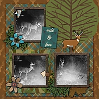 cmg_gone-hunting-brittbree-deer.jpg
