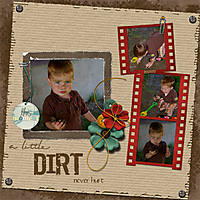 dirt_copy.jpg