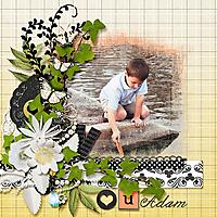 dlb_InBloomweb.jpg