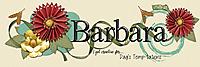 dt-SiggySensation3-PlusBackgound_Barbara-web.jpg