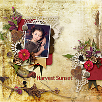 dt-onederful1-temp1_pld-HarvestSunset--irina-grishina-web.jpg