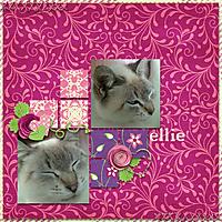 ellie_2.jpg