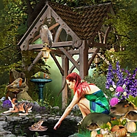 fairy-woods_desclics.jpg