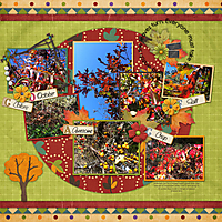 fall-leaves-2011-small.jpg