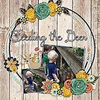 feeding-the-deer.jpg