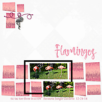 flamingos_in_a_row_2_small.jpg