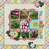 flower-class-1.jpg