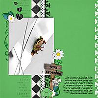 frogcrossingweb.jpg