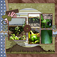 garden-2011-small.jpg
