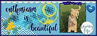 gs_fb_cover_sml.jpg