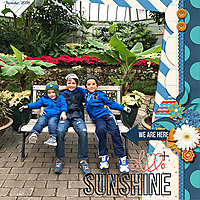 hello_sunshine_web.jpg