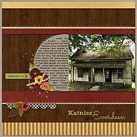 katniss_home_small.jpg