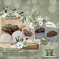 little-frogs.jpg
