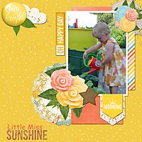 little_miss_sunshine_bearbeitet-1.jpg
