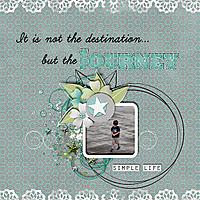 ljd_TheSimpleThingsweb.jpg
