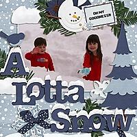 lotta_snow.jpg