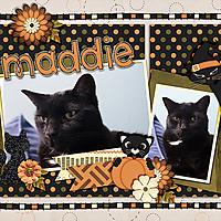 maddie-halloween-15.jpg
