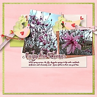 magnolia_600_x_600_1.jpg
