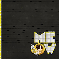 meow_600.jpg
