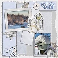 mhd_WinterTP1_template4_copy_Small_.jpg