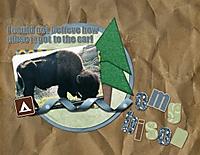 omg_bison.jpg