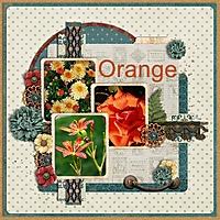 orange_gallery.jpg