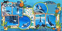 orcashow.jpg