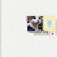 our_little_bug_600.jpg