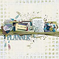 planner-600.jpg