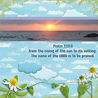psalm_HSA-BSS_rfw.jpg