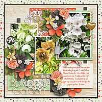 rose-garden-_-life-is-adventure-4-600.jpg
