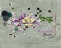 scrapbook_2007-01-01-Passio.jpg