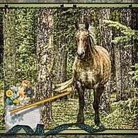 scrapbook_2013-08-05-Wild-Horses.jpg
