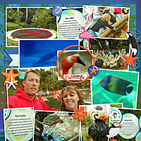 seaworld-2014-web-R.jpg
