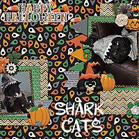 shark-cats.jpg