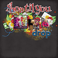 shop_til_you_drop.jpg