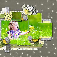 showcase-2-_-dandelion-wishes-600.jpg
