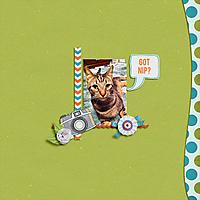 snap_fb.jpg