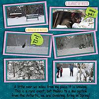 snow_copy.jpg