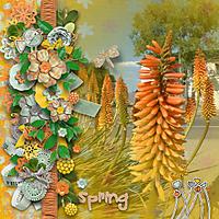 spring37.jpg