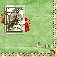 spring4.jpg
