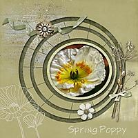 spring_poppy_gallery.jpg