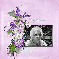 sts_lavenderandlaceweb.jpg