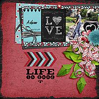sts_lovinglifeweb.jpg