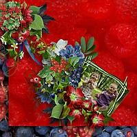 sweet-berries_scrap-angie-k.jpg