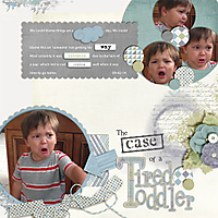 the-case-of-the-tired-toddler-QWS_CAS4_template2-copy.jpg